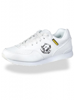 5666474556a9 Amstaff tenisky Dog Sneaker white empty